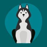 滑稽的动画片爱斯基摩尾随在动画片愉快的小狗和友好哺乳动物可爱的字符黑白面包例证 免版税库存图片
