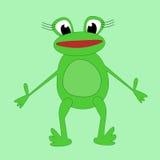 滑稽的动画片青蛙 库存图片