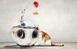 滑稽的可爱的动物 免版税库存图片