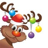 滑稽的圣诞节驯鹿 免版税库存照片