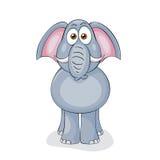 滑稽的大象 库存图片