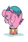 滑稽的大象 图库摄影