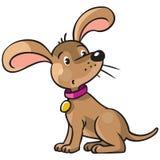 滑稽的小狗 免版税库存照片