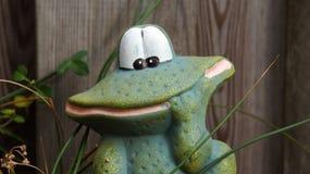 滑稽的小的黏土青蛙在庭院里 免版税库存照片
