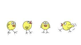 滑稽的小鸡 向量例证