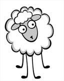 滑稽的幼小绵羊 免版税库存照片