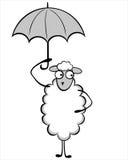 滑稽的幼小绵羊 免版税库存图片