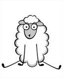 滑稽的幼小绵羊 免版税图库摄影