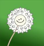 滑稽的微笑的动画片蒲公英传染媒介 库存照片