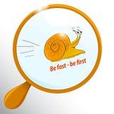 滑稽的快速的蜗牛 库存图片