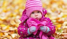 滑稽的愉快的女婴孩子户外在公园在秋天 免版税库存照片