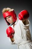 滑稽的拳击手反对 免版税图库摄影
