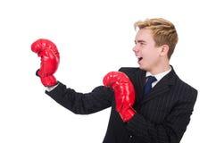 滑稽的拳击手商人 免版税图库摄影