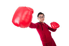 滑稽的拳击手 图库摄影