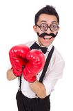滑稽的拳击手 免版税图库摄影