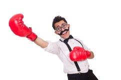 滑稽的拳击手 免版税库存图片