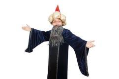 滑稽的明智的巫术师被隔绝 免版税库存照片