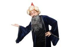 滑稽的明智的巫术师被隔绝 免版税库存图片