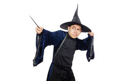 滑稽的明智的巫术师被隔绝 免版税图库摄影