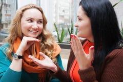 滑稽的朋友谈话在咖啡馆 库存图片