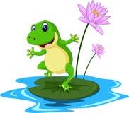 滑稽的池蛙动画片 免版税图库摄影