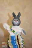 滑稽的灰色兔宝宝 库存照片