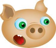 滑稽的猪 免版税库存图片