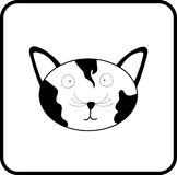 滑稽的猫枪口 免版税库存照片