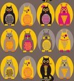滑稽的猫头鹰和猫 免版税库存图片