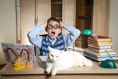 戴滑稽的眼镜的男孩做与猫的家庭作业坐书桌 儿童困难了解 有的男孩问题与 免版税图库摄影
