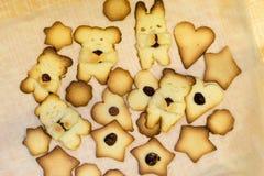 滑稽的自创烘烤照片,与坚果的甜一种油脂含量较高的酥饼 图库摄影