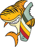 滑稽的虎鲨 免版税库存照片