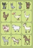 滑稽的逗人喜爱的家畜 免版税库存照片
