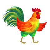 滑稽的雄鸡例证 免版税库存照片