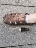 滑稽的鞋子 免版税库存图片