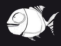 滑稽的鱼 库存图片