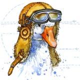 滑稽的鹅飞行员帽子水彩 时尚印刷品 向量例证