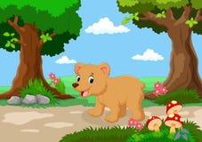 滑稽的婴孩熊有一个美丽的庭院的背景 皇族释放例证