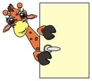 滑稽长颈鹿偷看 免版税库存图片