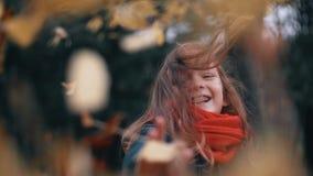 滑稽,快乐的逗人喜爱的小女孩特写镜头收集黄色秋叶并且投掷他们看照相机慢动作 股票视频