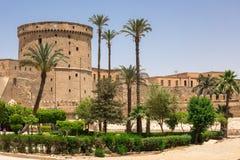 穆罕默德・阿里巴夏伟大的清真寺  免版税图库摄影