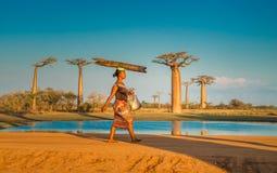 穆龙达瓦,马达加斯加- 2014年9月, 15日:猴面包树的大道 免版税库存图片