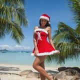 穆巴拉克 热带海滩的克劳斯 库存图片