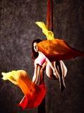 空中丝绸的,优美的曲解,杂技演员美丽的性感的舞蹈家执行在的一个把戏丝带 库存照片