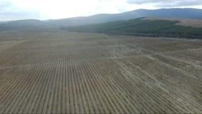 空中保加利亚山摄影strandja 看法从上面海边镇 股票视频