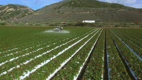 空中全景直升机射击了拖拉机浇灌的麦地在太平洋和高速公路附近 影视素材