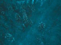 空中冬天森林视图 寄生虫风景,飞行上面 与雪,美好的墙纸背景的白色树 高现代photogra 免版税库存图片