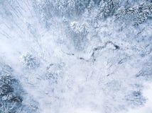 空中冬天森林视图 寄生虫风景 白色树有雪背景 高现代photogra 免版税库存照片