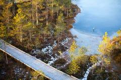 空中冬天沼泽风景 库存图片