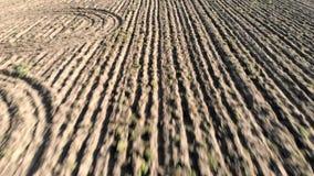 空中向后飞行的看法在农田犁了画干燥地球的领域和犁沟 股票视频